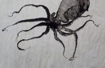 Paul !!! de Louis Laprise