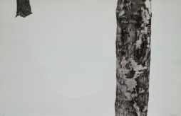 Parc Jeanne-Mance (dyptique), Michel Leclair, 1981